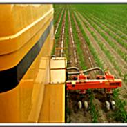 Opportunità dell'agricoltura 4.0